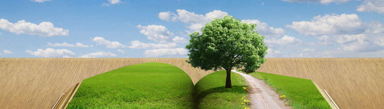 Fondazione ITS Agroalimentare Puglia