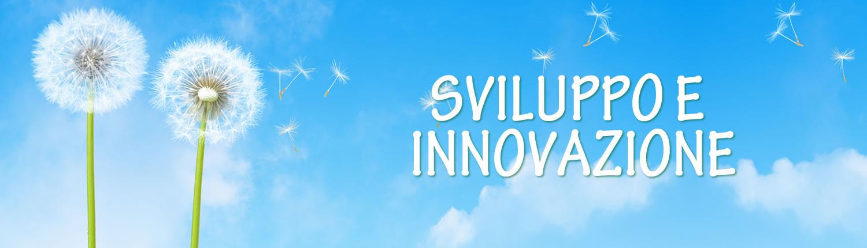 Sviluppo e Innovazione